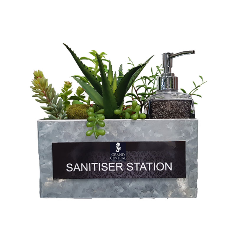 medium succulent sanitiser station