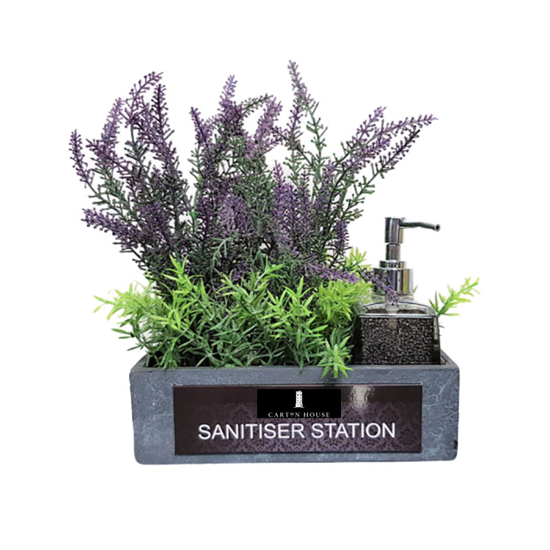 small succulent sanitiser station